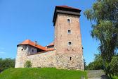 Dubovac Castle  — Stock Photo