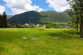 Village Mojstrana — Stock Photo