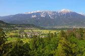 Villages in Alp — Stock Photo