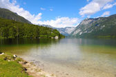Lago de bohinj — Foto de Stock