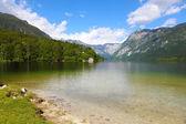 Sjön bohinj — Stockfoto