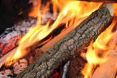 Flaming Logs On Fire — Stock Photo