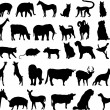 Animals — Vector de stock #16035425