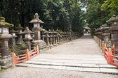 Japon lambaları — Stok fotoğraf