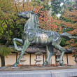 Stock Photo: Statue of horse - Kotohira, Japan