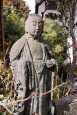 Pietra monaco — Foto Stock