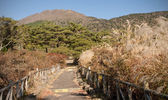 View of the Japanese geothermal spa — Stock Photo
