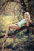 Gorgeous young lady on a tree — Stock fotografie