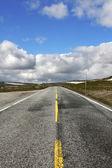 Asphalt road through the Hardangervidda plateau, Norway — Stock Photo