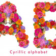 Cyrillic flower alphabet isolated on white — Stock Photo #12883434