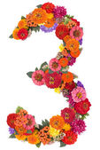 Number 3 made from flowers — Stock Photo