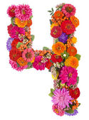 Number 4 made from flowers — Stock Photo