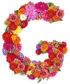 Alfabeto flor aislado en blanco — Foto de Stock