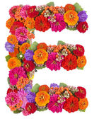 E, flower alphabet isolated on white — Stock Photo
