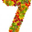 Stock Photo: Number 7 made from autumn leaves, isolated on white