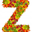 Z, autumn alphabet isolated on white — Stock Photo #14354369