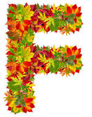 F, autumn alphabet isolated on white — Stock Photo