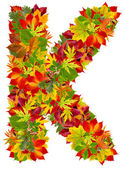K, autumn alphabet isolated on white — Stock Photo
