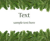 Christmas tree branches border over white background — 图库照片