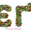 Christmas tree decoration - cyrillic alphabet — Foto Stock