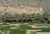 Ghul, en el Sultanato de Omán — Foto de Stock