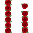Alphabet made from red roses and green leaves — Stock Photo #19773275