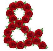 Ampersand symbol z červené růže — Stock fotografie