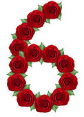 Number 6 made from red roses and green leaves — Stock Photo