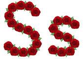 Alfabeto composto da rose rosse e foglie verdi — Foto Stock
