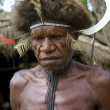 Warrior of a Papuan tribe in traditional clothes - Stock Photo