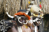 Non identificato di una tribù di papua — Foto Stock
