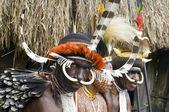 Tanımlanamayan bir papua kabilesinin — Stok fotoğraf