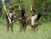 Unidentified warriors of a Papuan tribe — Stock Photo