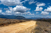 The road in the African savannah — Stock Photo