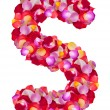 Letter S  made from colorful petals rose — Stock Photo