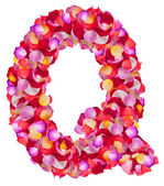 Letter Q made from colorful petals rose — Stock Photo
