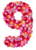 Number 9 made from colorful petals rose — Stock Photo