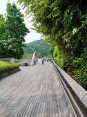 Onde henderson è il più alto ponte pedonale a singapore. — Foto Stock