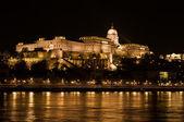 Buda Castle seen across the Danube — Stock Photo