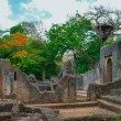 Remains of Gede, near town Malindi in Kenya, Africa — Stock Photo #30164249