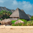 Traditional cottage between palm trees on the beach — Stock Photo #31059765