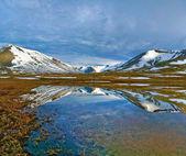 Landscape of Polar Ural mountains — Stock Photo