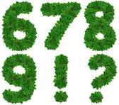 Set of numbers . Christmas tree — Stock Photo