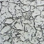 Grunge gray crack background — Stock Photo