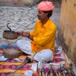 Snake charmer in Amber Fort ,Jaipur, India. — Stock Photo