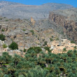 Stock Photo: Village Misfat, sultanate Oman