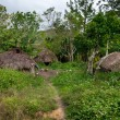 A traditional village in Papua Province, Indonesia — Stock Photo