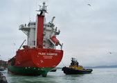 Sea port of Petropavlovsk-Kamchatsky — Stock Photo