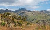 Landscape in National Park — Stock Photo