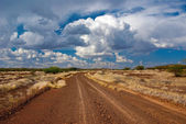 The road in the African — Stock Photo